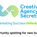 leads, #inbound, #opportunityspotting #newbusiness book cover