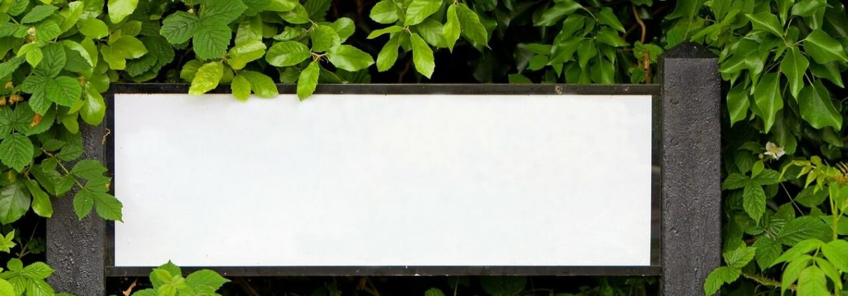 White board surrounded by leaves